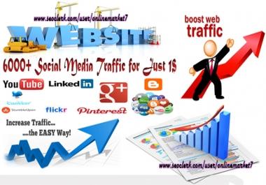 6000+ Social Media Traffic from Targeted Regions
