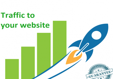 15,000+ Real Humans USA + Organic Google for your website
