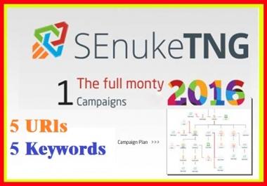 Provide Senuke TNG the Full Monty to create massive backlink diversity