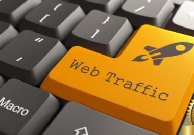 50000 Real Organic Human Traffic to Your Website