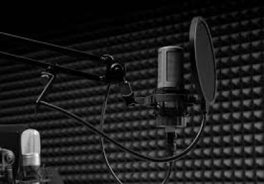 Voice over work for higher Batman,Girl voice, Arnold Schwartsnager