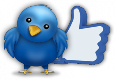 400 Facebook Fanpage likes OR 1300 Twitter Marketing OR 3000 INSTAGRAM followers or likes
