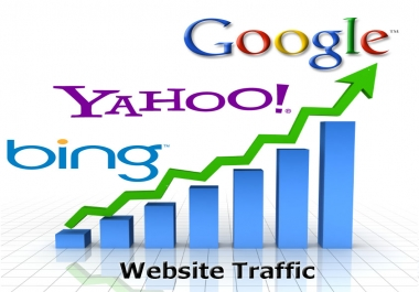 Super Niche Targeted 50000 Visitors Traffic to Website