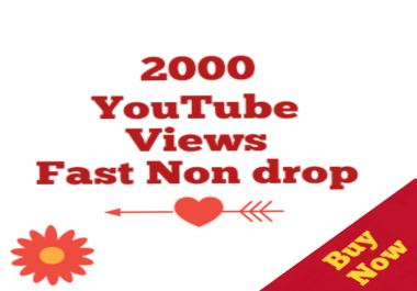 Safe 1000-2000 Youtube Views High quality Non drop very fast