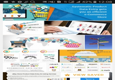 E-commerce store or website form fill up data entry.