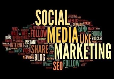 Custom Social Media Marketing Gig - Anything You Need
