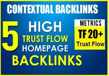 5 PBN Backlinks TF 20+ Permanent Homepage With Content
