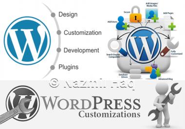 Customize wordpress theme, website