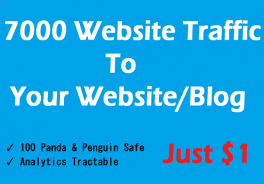 Get 7000 Real & Safe Targeted Human Traffic To Your Website or Blog
