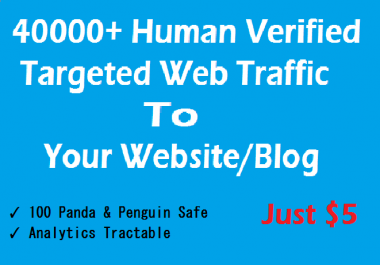 Drive 40000+ Targeted Human Verified Unique Website Traffic