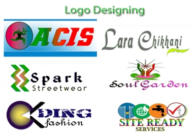 Professional Logo design within 1 day for low rate