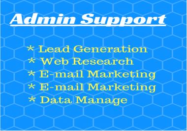 Administrative Support, Virtual Office Assistant, Data Arrangement