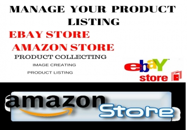 data entry on your eCommerce store ebay,amazon and shopify