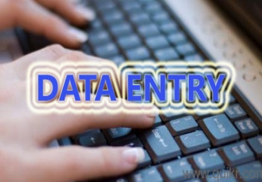 25 Pages Data Entry Work
