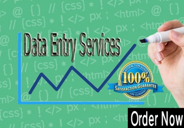 I can Do Any Data Entry Jobs