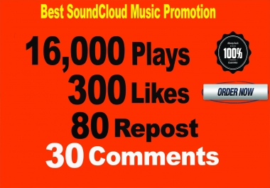 16,000 SoundCloud Plays 300 Likes 80 repost 30 Comments