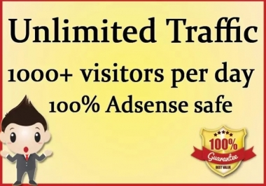 DRIVE 1000 daily targeted TRAFFIC to your Sales page for 14days