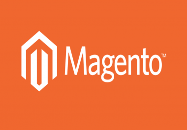 fix bugs , errors or issues in magento website
