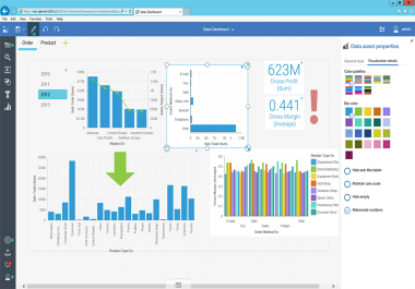 informatica report and visualization