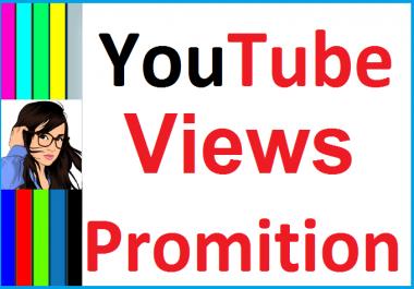 Organic YouTube Video Promotion Social Media Marketing Instant Start Only