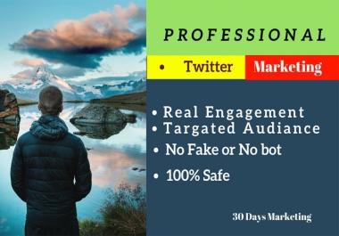 Professionally twitter marketing 7 days