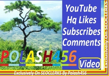 60 Likes, 50 Subscribers And 25 Custom Comment YouTube High Quality Give you 1/2 Hours Start