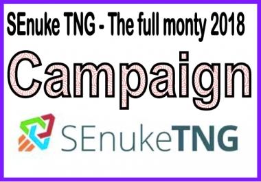 Do SEO to rank website PR higher with SEnuke - SEnuke TNG - The full monty 2018 - Campaign