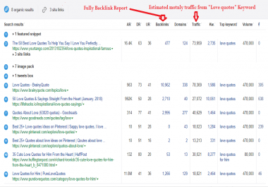 Best 5,000 related keyword, Top 10 Url detailed analyse and report of backlinks and ranked keywords