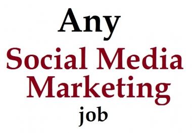 do your any social media marketing job