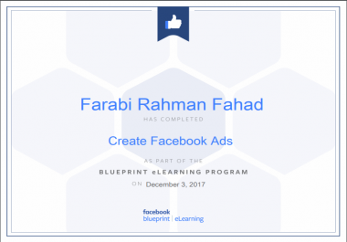 Managed And Set Up Your Facebook Ads