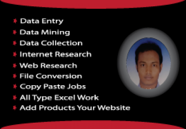 I Can Do Any Kind Of Data Entry work and be your virtual assistant.