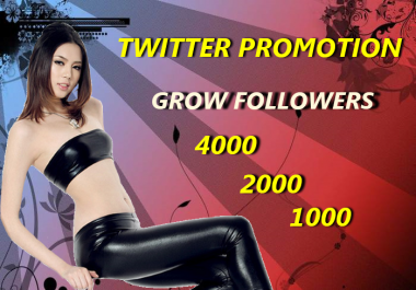 I'll Promote Your Twitter Profile