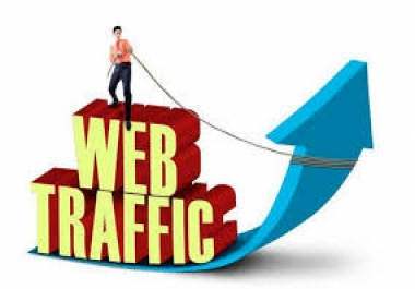 UNLIMITED HUMAN TRAFFIC BY Google Twitter and many more to web site for 30 days for $20
