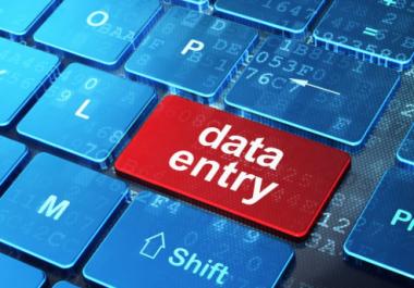 Do any type of data entry Job