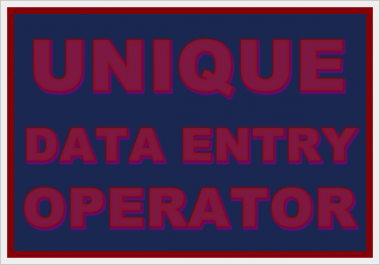 Offer You Online Data Entry
