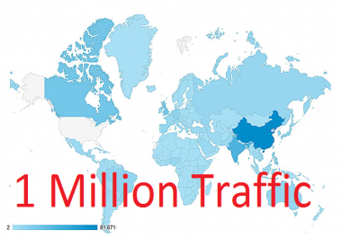 Fast On Time Delivery 1 Million Worldwide USA Website Traffic