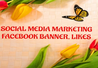 professional facebook promotion on your business