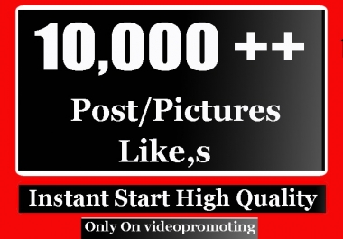 Instant Start 10000 High Quality Social Pictures and photo Promotion