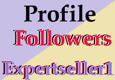 3000 Non Drop Profile Followers Social Media Marketing