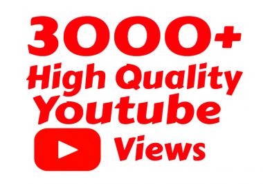I will add Fast 3000+ High Quality Youtube vie ws