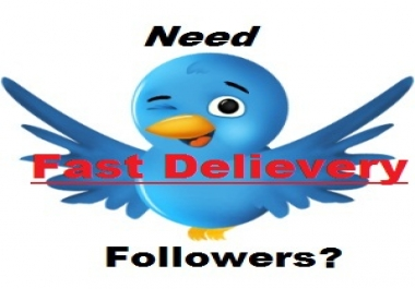 "Get You 1,000 High Quality ""USA"" Twitter Followers *Instant Delivery* Within 6 To 12 Hours"