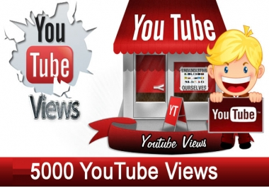 5000 Youtube Views within 24 Hours