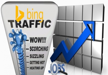 Organic traffic through Bing by Keywords to your website