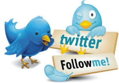 Need REAL AND ACTIVE twitter followers