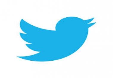 Need 30.000 twitter followers instant