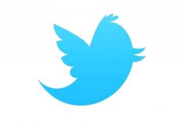 I need 100k + 200k Twitter followers
