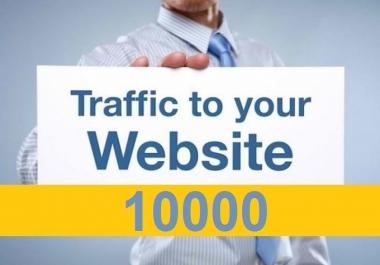 5000 Website Traffic