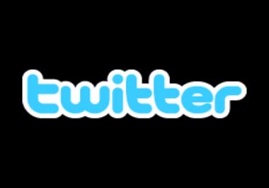 get me twitter verified