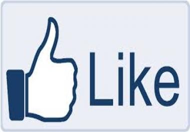 1k 100 Real USA Facebook Fans