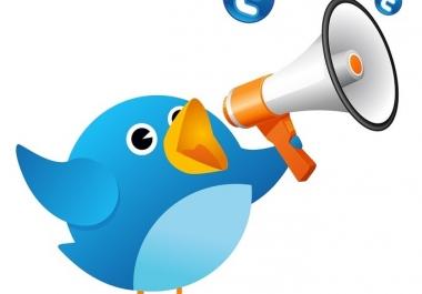 How much followers twitter NEVER DROP